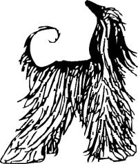 Afghan Hound Club of Omaha