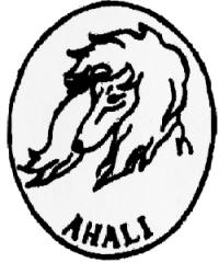 Afghan Hound Association of Long Island