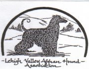 Lehigh Valley Afghan Hound Association