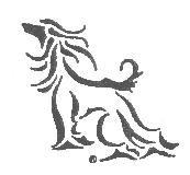 Afghan Hound Club of Dallas